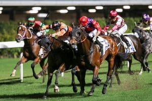 New boy Domeyer bags a double, Callan strikes back at the Valley