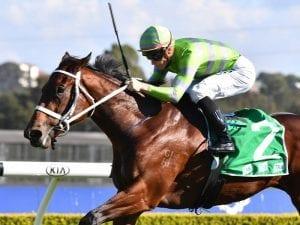 Savigne improves Queensland Oaks ranking