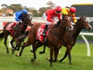 Missile Mantra too classy in Caulfield win