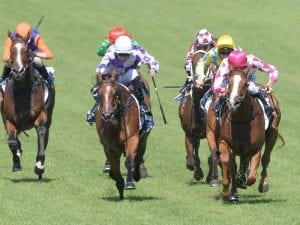 Champagne Cuddles chases first Group One