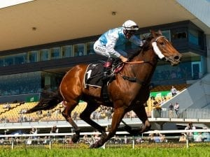 River Racer heads south after Doomben win
