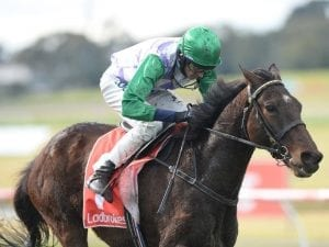 Richard Cully to put trainer's hat on