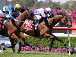 McEvoy with two chances in G1 Goodwood
