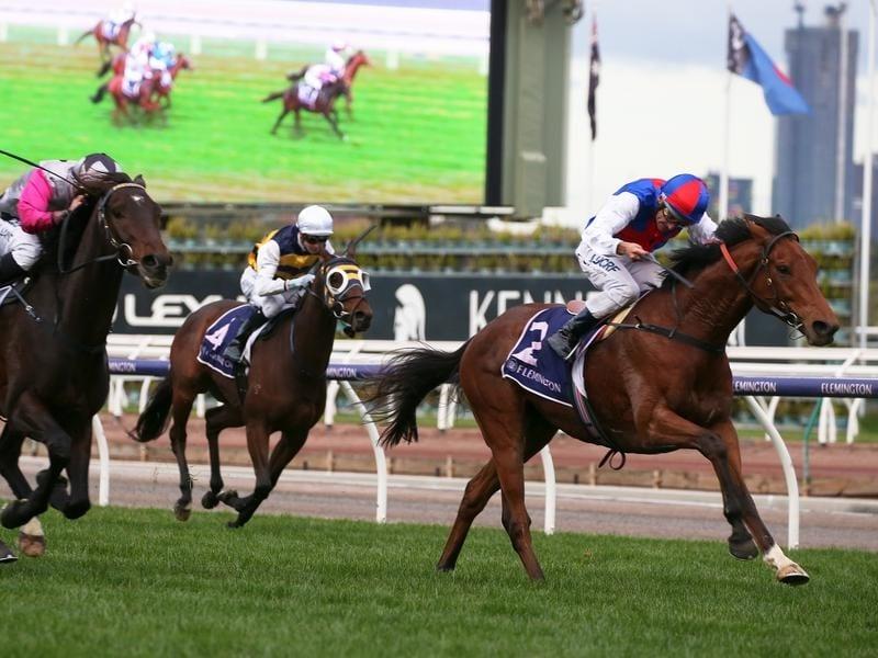 Excellent start to new-look Andrew Ramsden | Horse Betting