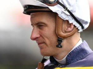 Blake Shinn to ride NZ 3yo Vigor Winner