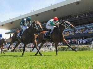 Berry guides Abdon to Wagga Gold Cup win