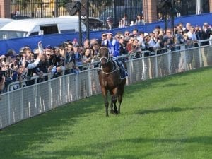 Winx to be honoured with stand at Randwick