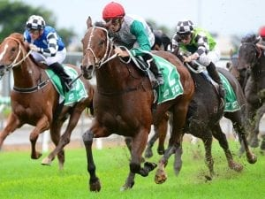 Life Less Ordinary takes Hollindale Stakes