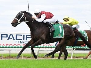 The Lord Mayor salutes in Gold Coast Cup