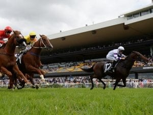 Leading fancies draw wide in The Goodwood