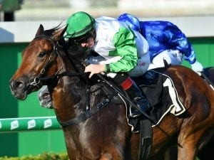 Barbie after a change of luck in Group One