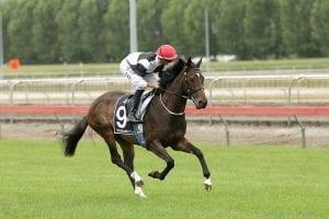 Racing taking precedence for Mahoney