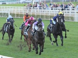 She Knows on track for Randwick success