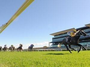 Nobu ignites Group 1 Queensland Derby bid