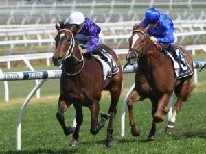 Blinkers go on Lees filly at Rosehill