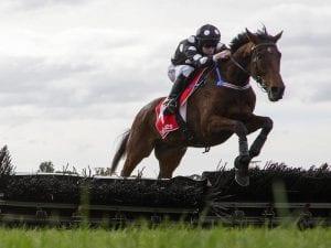 John Allen jumps to another Sandown double