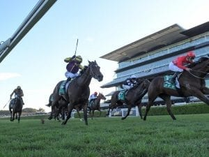 Double shot at Guineas for Tracey Bartley