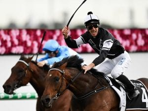 Victorem shows true class in Hinkler win