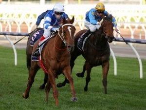 Gytrash dominant in Creswick Stakes win