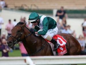 Flemington race next step for Villermont