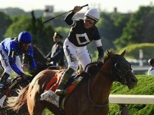 USA horse racing news | Horse Betting