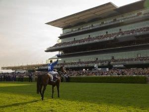 Bowman admits Winx campaign took a toll