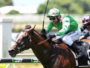First Crush to atone in Ipswich Cup