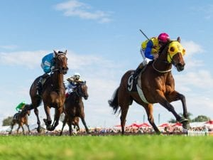 Ipswich betting preview, top tips & quaddie picks | Sunday, 6/6