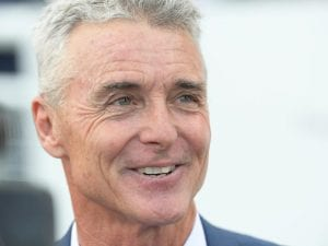 Randwick conditions poised to favour Joey