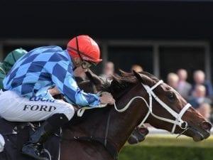 Funstar finds gap to win again at Randwick