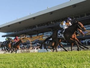 Azuro claims tough staying win at Rosehill