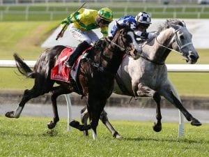 Sandown double for Chris Waller stable