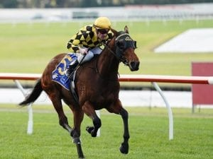 Well-bred Tides dominant in Sandown win