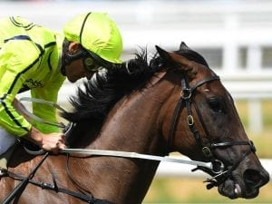 Monash Stakes return for Crack The Code