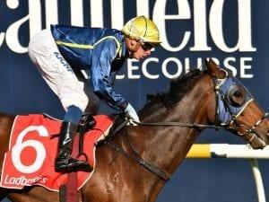 Travimyfriend lands first Australian win