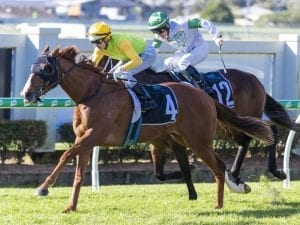 Snitch drops in class for Doomben success