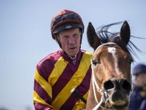 Sydney trip on the cards for Dunn filly