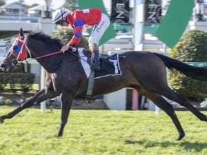 Victory Eight set to continue winning run