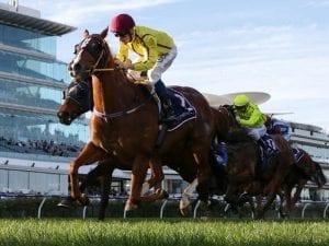Parnhams combine in Flemington Listed win