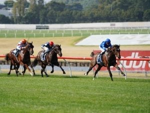Chenier ruled out of spring carnival