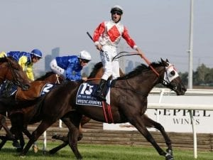 Darmanin excited for Mystic Journey return