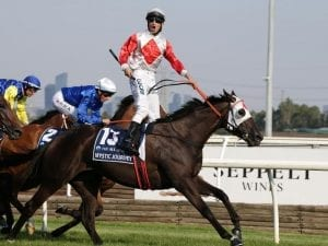 Mystic Journey to trial again at Devonport