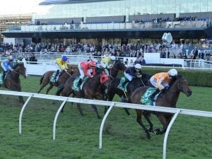 Ljungberg could chase another Randwick win