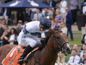 Time To Reign primed for race return