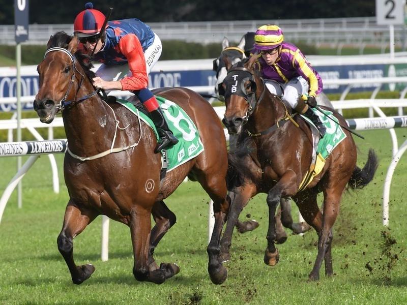Jockey Hugh Bowman rides Sir Elton to victory at Randwick.