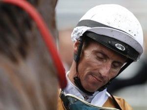 Nash Rawiller returns to the Sydney scene