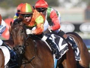 Jason Coyle splits promising stablemates