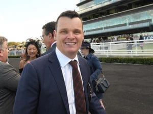 Stats favour Tipperary in Winter Stakes