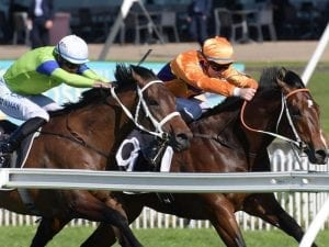 Spend gets the cash on debut at Rosehill