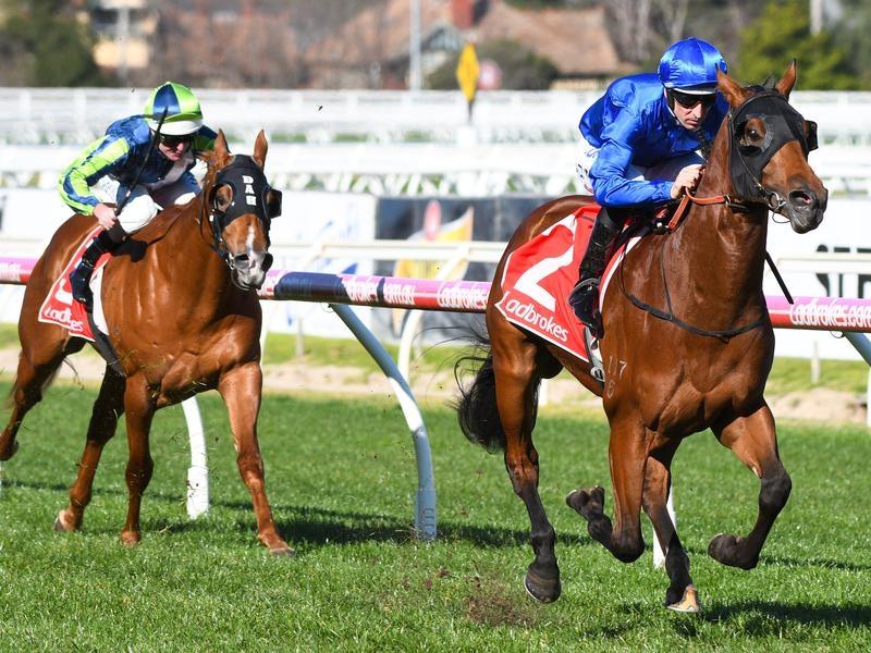Bivouac winning the Vain Stakes.